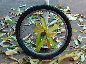 wheel-508985_1280