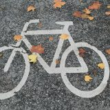 bicycle-path-491313_1280
